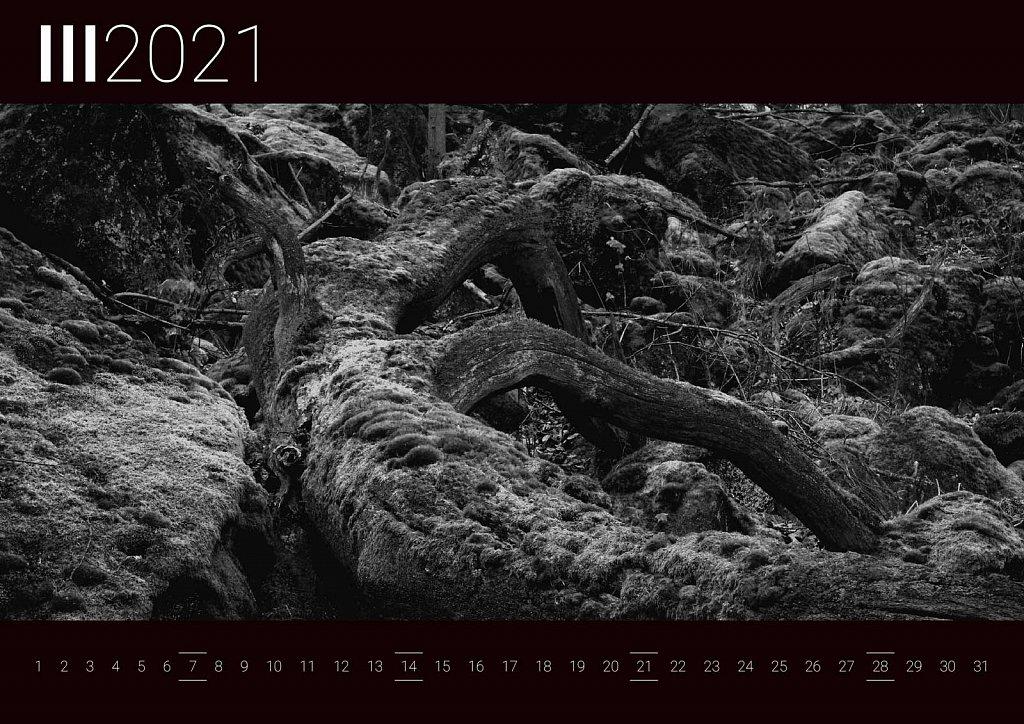 Kalendarz-202016.jpg